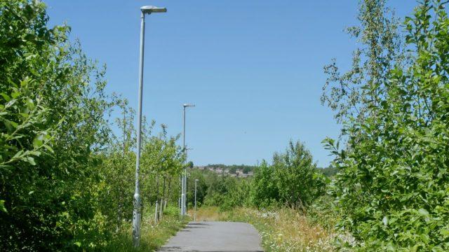 Meadowhall Way Footpath (5)