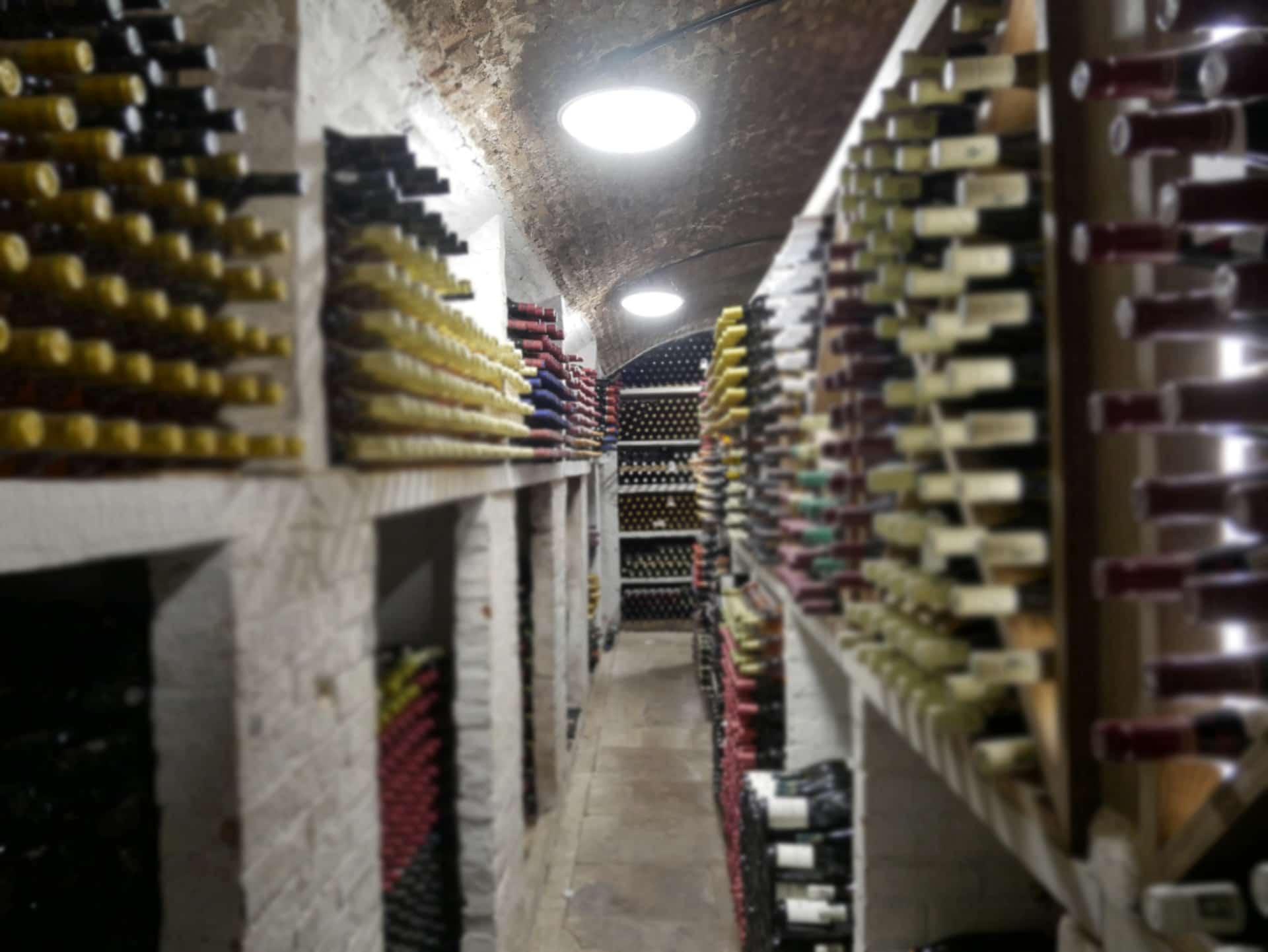 St Johns College Oxford - Harmony - Wine Cellar